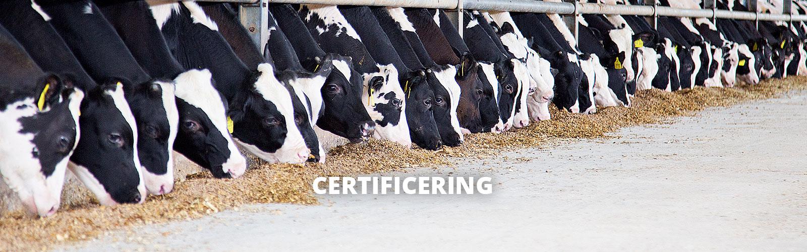 Certificiering-Header